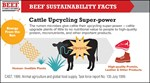 Cattle Upcycling Power