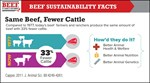 Same Beef Fewer Cattle